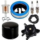 JJDD Filtro dell'Aria Pre pulitore Filtro Carburante Pompa Filtro Olio Candele Morsetti Ricambio per Briggs & Stratton Vanguard V-Twin 12.5-21hp