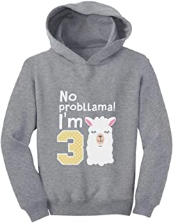 Tstars Gift for 3 Year Old Girl No Probllama 3rd Birthday Toddler Hoodie
