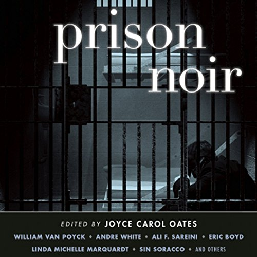Prison Noir audiobook cover art
