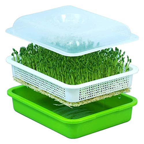 Bluetooth earphone Seed sprouter tray seed germination tray Bean Sprout Grower Seedlings Germination Tray Kit, Fit for Gardening Seedling Propagation Germination with Lid 2 PCS (Color : 1 Pack)