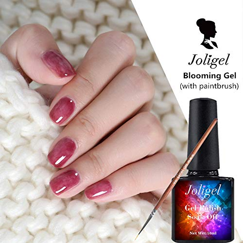 Joligel Blooming Gel Kit mit Pinselmalerei Liner Pen für Nägel Blossom Gel Nagellack zum Marmorieren Aquarelleffekt für Nail Art Nail Design UV LED Maniküre 10ML
