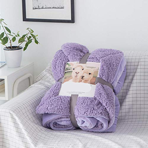 cyxb Double Size Duvet Feather and Down Duvet, Coral Fleece warm blanket Winter Sheet Bedspread throw sofa blanket Mechanical Wash Flannel Blankets for Bed Sofa Warm-purple_150*200cm/59 * 79'