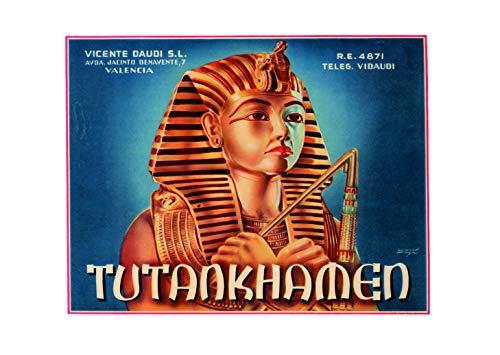 Ecool Tutankhamen - Calamita da frigo in acrilico stile vintage retrò shabby chic o può essere utilizzata una targa