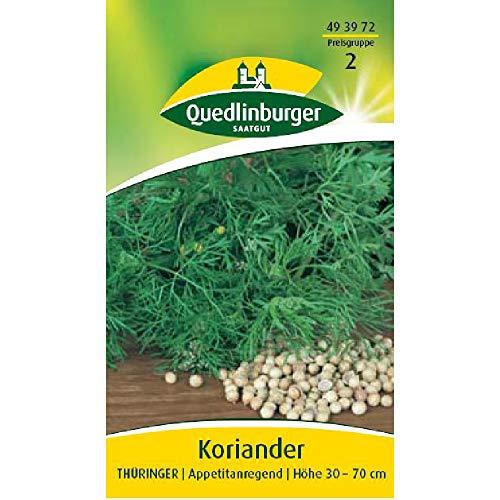 Koriander, Thüringer