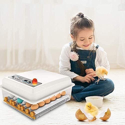 Brutmaschine Vollautomatisch, Inkubator 16 Eier, Automatisches Eierdrehen + Eingebauter Eierkerzen, Inkubator Hühner Brutautomat Küken Brutapparat für Hühner Wachteleier Vögel Ente Gänse WEIWAN