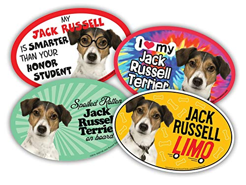 Prismatix Decal 4 Dog/Cat Oval Magnets for Cars, Lockers, Refrigerators, Jack Russell Terrier