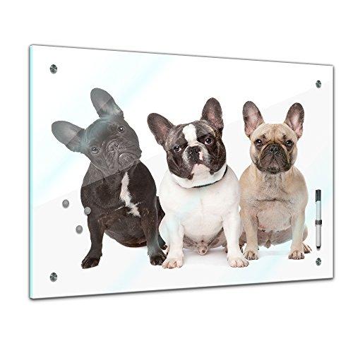 Memoboard 60 x 40 cm, Tiere - Französiche Bulldoggen - Memotafel Pinnwand - Tiermotive - Tierbild - Tier - Dogge - Hund - Hundebild - Haustier - Fellnase - Küche - Glasbild - Handmade