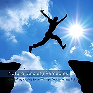 Controlling Anxiety Sound Therapy For Anxiousness Vol. 2