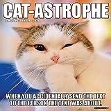 Cat-Astrophe 2021 Wall Calendar