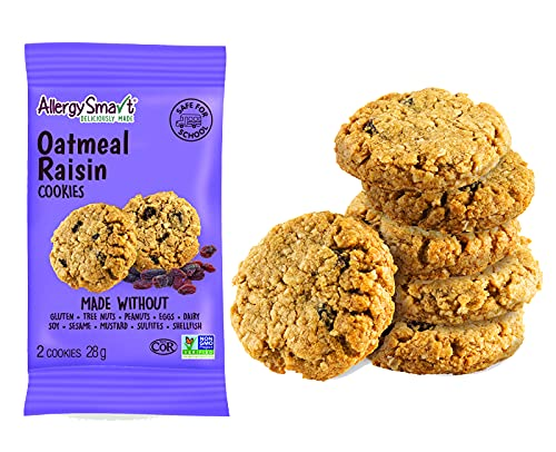 Allergy Smart Cookie - Safe for School, Nut Free, Plant Based Organic Snacks - Dairy Free, Gluten Free Delicious Ingredients - 28g Units, 15 Individual Wrapped Units, 420g Total (Oatmeal Raisin)