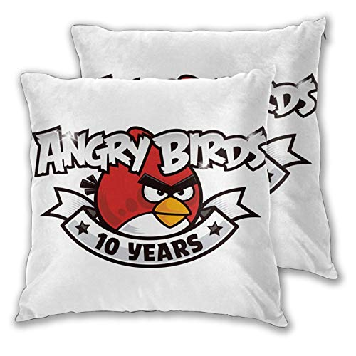 Obbligato Throw Pillow Covers an-Gry Birds Modern Square Pillowcases Cushion Cases for Sofa Couch Bedroom Chair 18'x18'