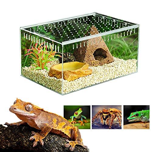 Sunneey Terrarium kooi doorzichtig, insectenvoering, kweekbox, horizontale ALEC doos, met schuifdeksel, geschikt voor spinnen, schorpioen, gehoor kip, kevers, Small, doorzichtig