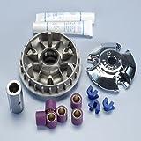 Polini Maxi Speed Control variomatik Tuning per Piaggio X9180200250