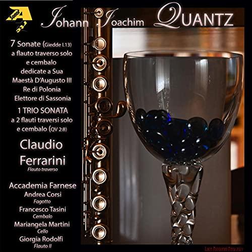 Sonata No.4 in D major, QV 1:47 : II. Allegro di molto ma...