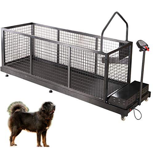 QNMM Tapis Roulant per Cani, Tapis Roulant per Animali Domestici da Compagnia Animale Domestico, Animale, Mastino Tibetano, Cane di Grossa Taglia, Tapis Roulant Esercizio per Cani Fino a 300 Libbre