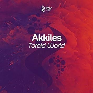 Toroid World