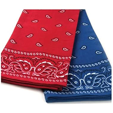 Red and Blue Bandana Print Dish Towels, Set of 2