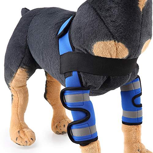 BVAGSS Einstellbar Bandage Knieschützer Atem Kniebandage Hund Leggings Joint Wrap Unterstützung für Das Hinterbein/Vorderbein Ihres Hundes XH005 (M, Blue)