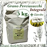 Prodigital Grano antiguo Siciliano: harina integral Semola Perciasacchi 5 kg.