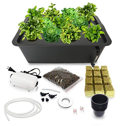 DWC Hydroponics Growing System - Medium Size Kit w/Airstone, Bucket, Air Pump, Rockwool - Best Indoor Herb Garden for Cilantro, Mint - Complete Hydroponic Setup (8 Black)
