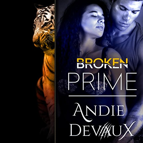 Broken Prime cover art