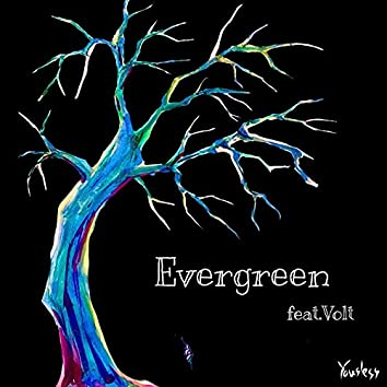 Evergreen (feat. Volt)