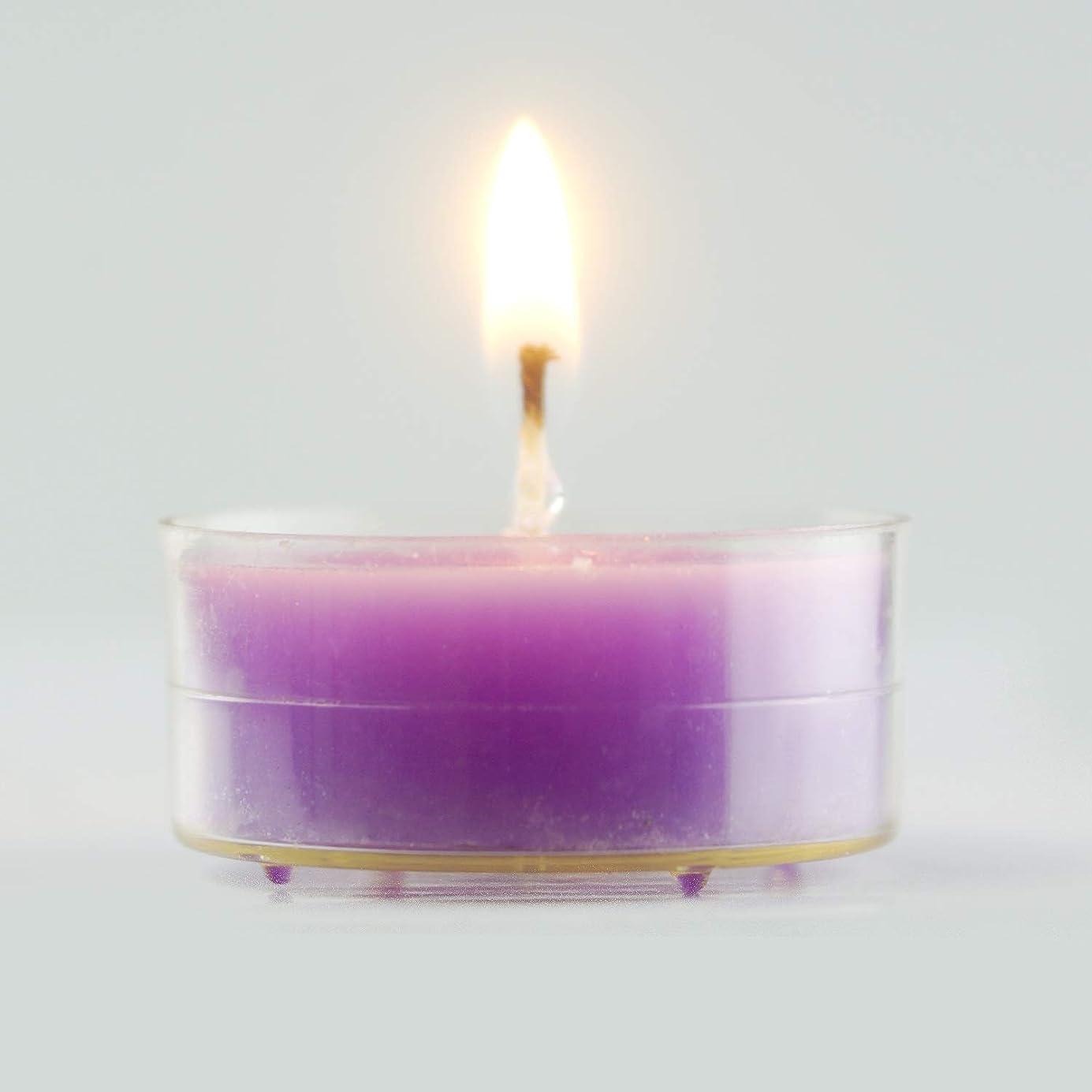 肉ライフル思い出環境に優しいキャンドル きれいな無煙大豆ワックス色味茶ワックス48ピース4時間燃える時間白いキャンドルライト用家の装飾、クリスマス休暇、結婚披露宴の装飾 実用的な無煙キャンドル (Color : Purple)