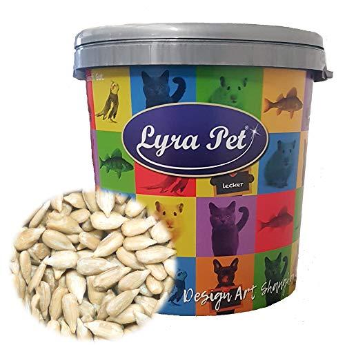 Lyra Pet® 10 kg Sonnenblumenkerne 10000 g geschält in 30 L Tonne Vogelfutter Winterfutter