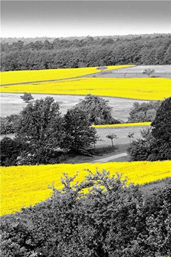 LDTSWES Gele stijl landschap legpuzzels, houten vliegtuig oppervlak puzzel, voor met familie nummer samen spelen spelletjes speelgoed puzzel 1000 stukjes