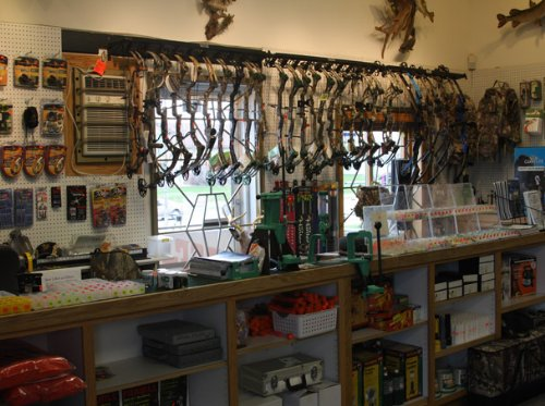 Inicio tienda de caza de tiro con arco plantilla de Plan de negocio muestra en español
