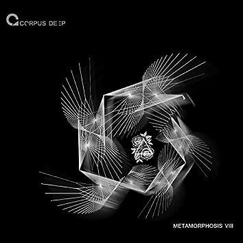 Metamorphosis 8