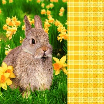 20 servetten In a Rabbit - knuffelige haas / dieren / diermotief / konijn 33x33cm