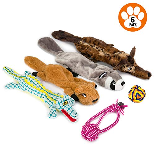 Dog Squeaky Toys Peluches para perros Chew No Stuffing Puppy