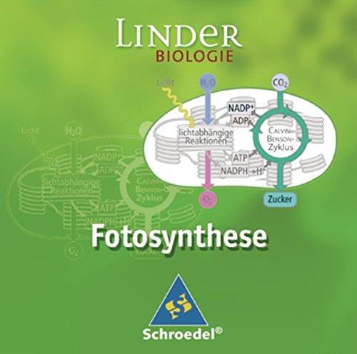 LINDER Biologie SII: Fotosynthese: Einzelplatzlizenz: Lernsoftware / Einzelplatzlizenz (LINDER Biologie SII: Lernsoftware)
