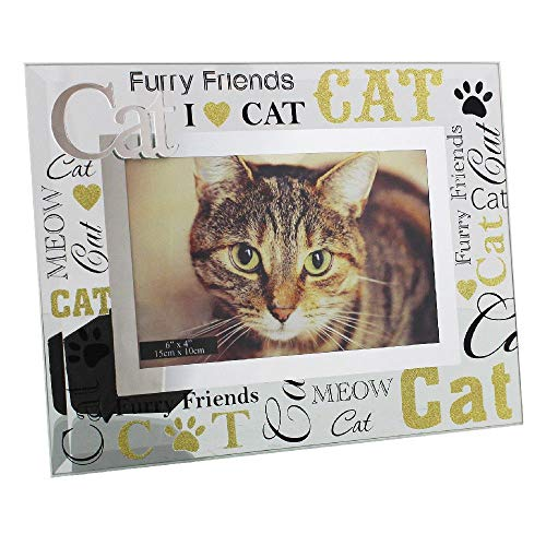 Happy Homewares Contemporary Glass Cat Themed 6' x 4' Picture Frame | Lovely Gift Idea