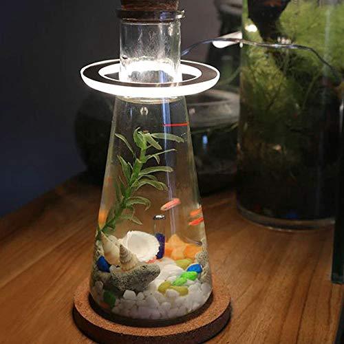 TENGXI LED Grow Light, Creative Fish Tank Growing Light Lámpara de Anillo de ángel USB Ecológica Espectro Completo Phyto Grow Lámparas 5V Phytolamp para Plantas Iluminación de Crecimiento