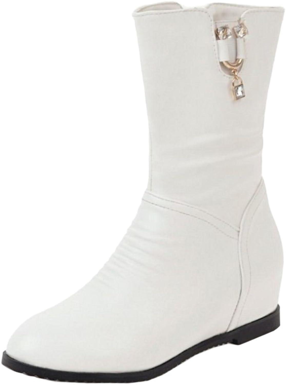 CarziCuzin Women Hidden Heel Boots Zipper