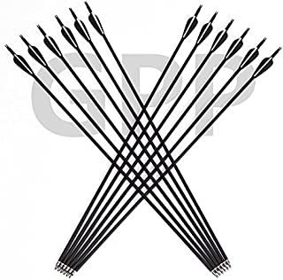 GPP Archery Carbon 30-Inch Targeting/Hunting Arrows Field Points Replaceable Tips for Recuve Bow & Compound Bow
