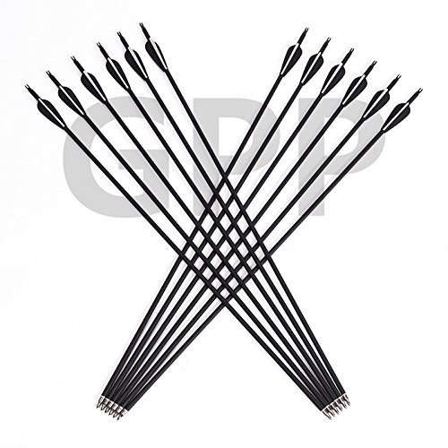 GPP Outdoors Carbon 30' Black Shaft Arrows with Field Points Replaceable Tips (12 Pack) for Recurve Bow & Compound Bows