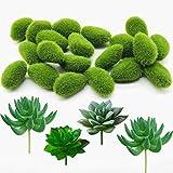 Woohome 24 Stück Künstliche Moosfelsen Dekorative, 20 Stück Grüne Moosbälle Künstliche Moos Steine und 4 Stück Grün Unfotted Faux Blume Sukkulenten für Feengärten und Handwerk