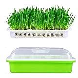 FILWO 1 Stück Sprout Tablett Bodenfreier Samenzüchter Saatgut-Sprouter-Tablett mit Abdeckung für Sojabohnen, Mungobohnen, Erdnüsse, Schwarze Bohnen