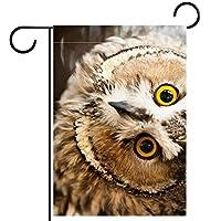 ガーデンヤードフラッグ両面 /12x18inch/ ポリエステルウェルカムハウス旗バナー,あなたを見ている大きな黄色い目の鳥のフクロウ