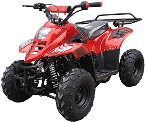 100cc quad - 7