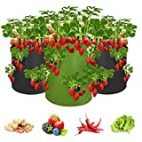 Bolsa para plantas de fresa, 43 litros, con asas y 8 bolsillos laterales de crecimiento, transpirable, para fresas y verduras, 3 unidades