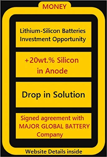 Lithium-Silicon Battery investment: Investment Opportunity (English Edition)