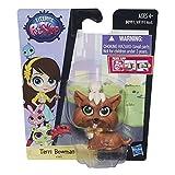Hasbro - Mascotas Littlest Pet Shop