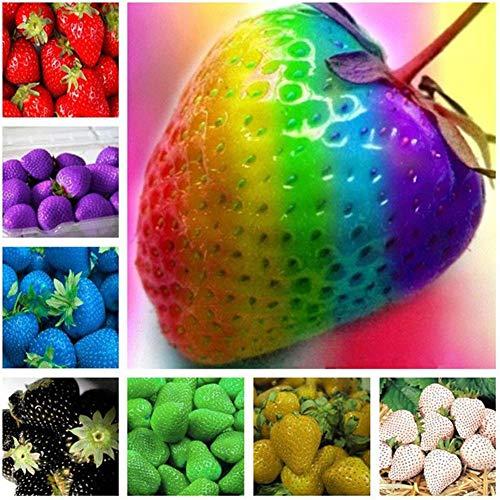 Erdbeer-Samen, 50 Stück, gemischte Farben, Erdbeeren, Obst, Pflanzen, Samen, Bonsai, Balkon, Garten, Hof, Dekoration