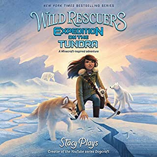 Expedition on the Tundra cover art