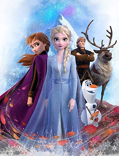 Große Frozen 2 Die Eiskönigin Team Kuscheldecke 130 x 170 cm super weiche Wohndecke Decke Sofadecke Fleece-Decke warme Kinderdecke Disney Olaf Anna ELSA Sven Kristoff Arendelle Völlig unverfroren