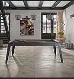 Rene Pierre - Billard Steel Drap Slate - Billard avec Plateau Table - Fabriqué en France - 216x97x40 - Gris, WENGE, Rouge